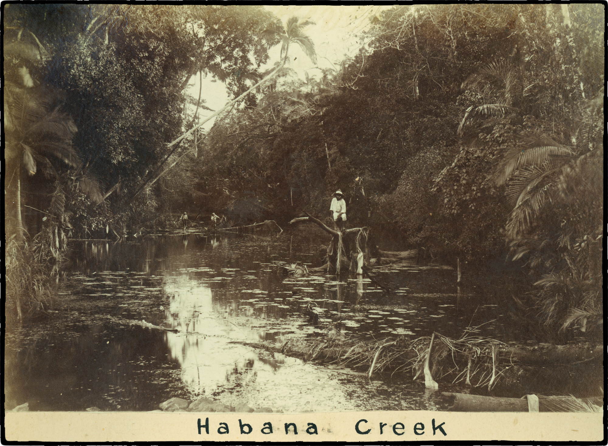 2-Habana Creek outside Mackay ca. 1880