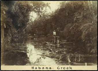 2-Habana Creek outside Mackay ca. 1880